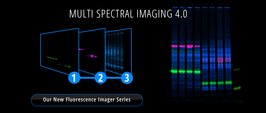 multi spectral imaging