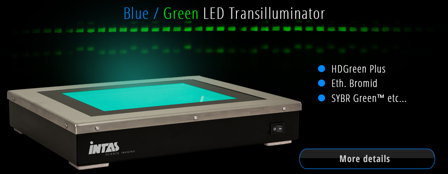 Blue Green LED Transilluminator