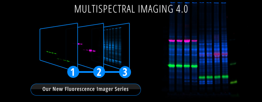 multispectral imaging